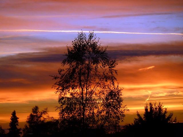 WEBカメラを使って、空の様子を撮影するウェザーカメラを作ってみました